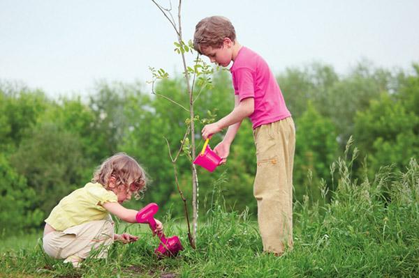 Труд в природе – важное средство воспитания человечности